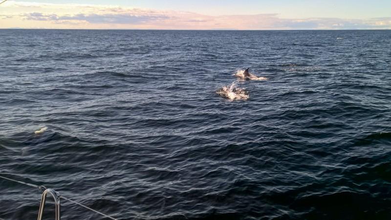 Faroe-iceland-6
