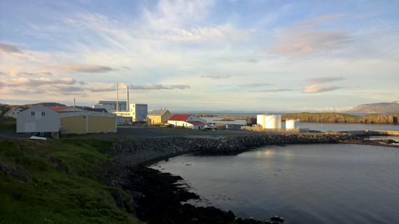 Island blogg-46