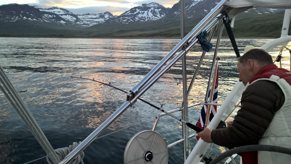Island blogg-5